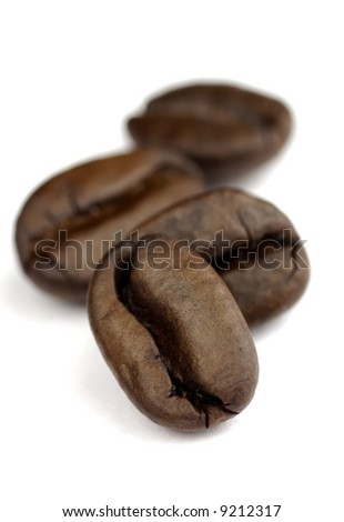 small row of coffee beans with SDOF on white background - stock photo