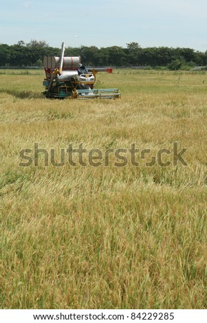 Small scale farming with tractor and plow in rice field - stock photo