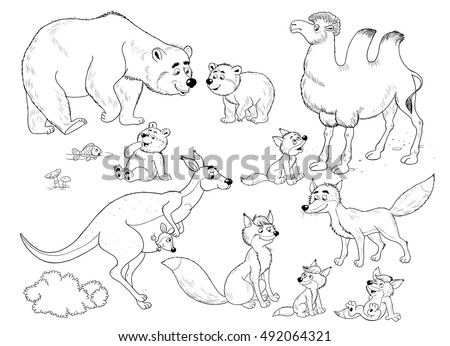 Small Set Of Cute Wild Animals Mother Bear And Her Cubs Kangaroo With