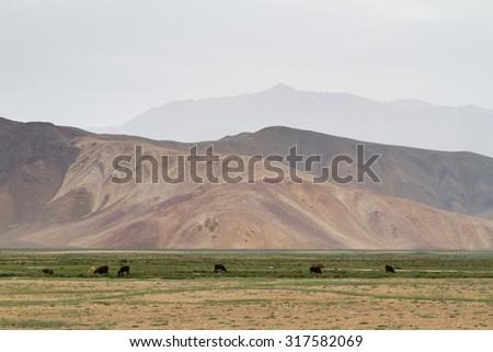 Small settlement in Bolonkul village, Pamir, Tajikistan, Central Asia. Bolonkul is the coldest place in Tajikistan. - stock photo