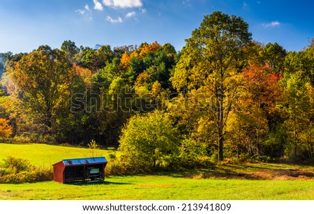 Small shed and autumn trees, in rural York County, Pennsylvania.