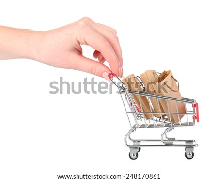Small shopping cart in female hands isolated on white - stock photo