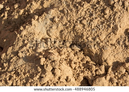 Small slides on the surface of the sand on the beach or in a sandbox, illuminated by the evening sun.