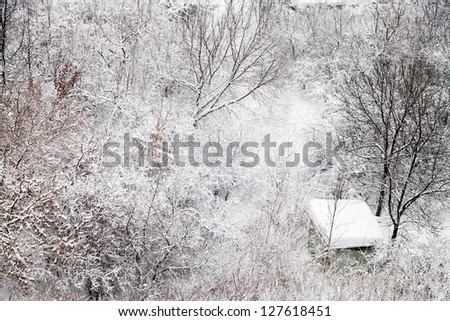 small snow-covered hut in winter forest