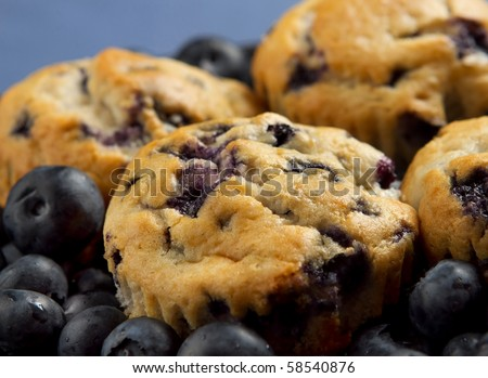small stack of blueberry muffins and fresh blueberries over a blue background closeup - stock photo