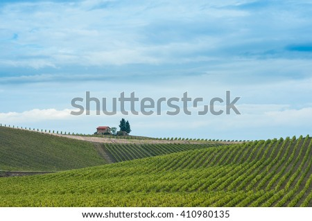 Small stone hut with red roof and three trees on ridge line above lush vineyard sweeping up slopes under stormy sky