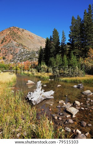 Small stream in mountains of California. Autumn clear midday - stock photo
