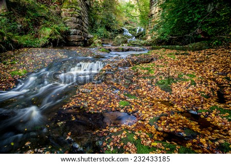 Small stream in the North York Moors national park in Autumn with thousands of leaves surrounding a small cascading waterfall.  - stock photo