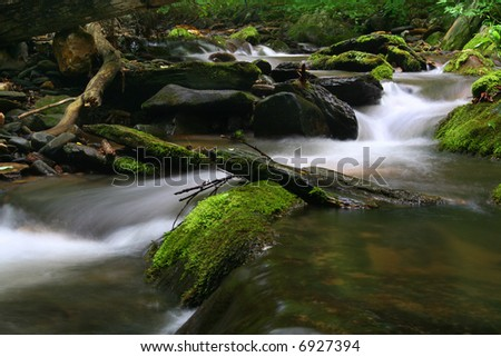 small stream in the woods - stock photo