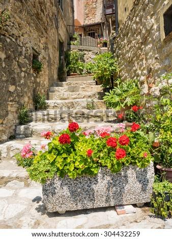 Small street in Sasso Pisano Tuscany, Italy - stock photo