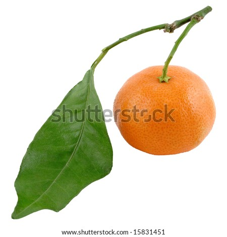 Small tangerine and green sheet (With Clipping Path)