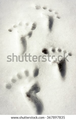 Small traces/footprint imitation on white winter snow surface. Outdoors Closeup vertical image.  - stock photo