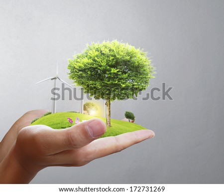 Small tree in a hand businessman