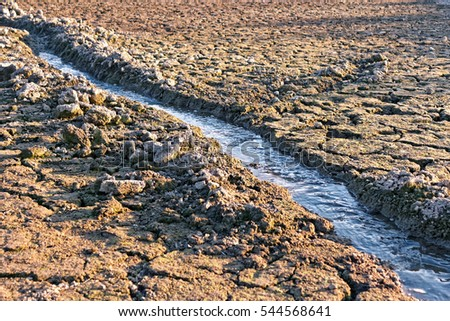 Small water stream flowing in the channel among dried cracked earth in hot summertime