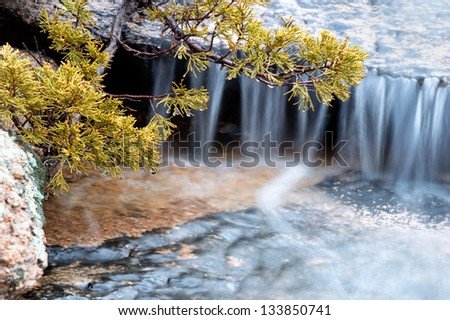 Small waterfall and juniper branches - stock photo