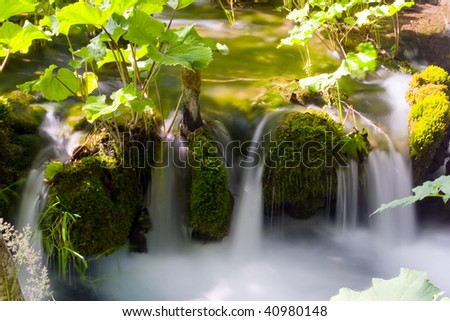Small waterfall between the leafs - stock photo