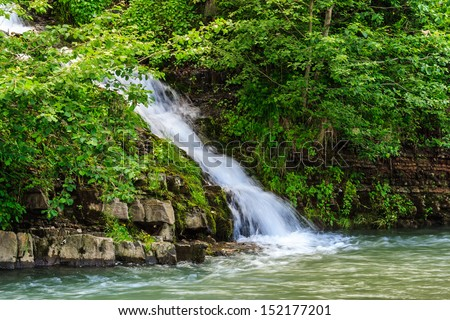 small waterfall coming out of the forest falls to a small mountain stream