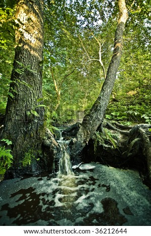Small waterfall in a forest - stock photo