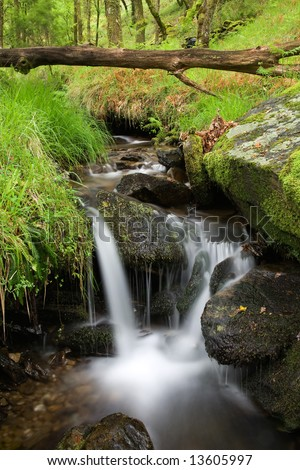 Small waterfall on a creek in the woods.