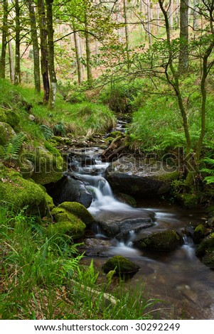 Small waterfall on a creek in the woods. - stock photo