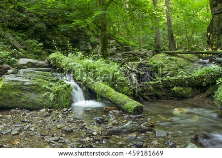 small waterfall over mossy rocks in deep forest - stock photo
