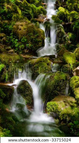 Small waterfalls surrounded by rocks and vegetation in North American temperate rain forest - stock photo