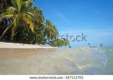 Small waves on a sandy beach with tropical vegetation viewed from the water surface, Caribbean sea - stock photo