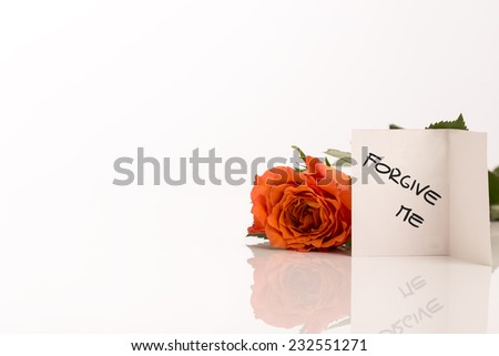 Small White Forgive Me Card Beside Fresh Orange Rose Flower with Copy Space on the Left Side. - stock photo