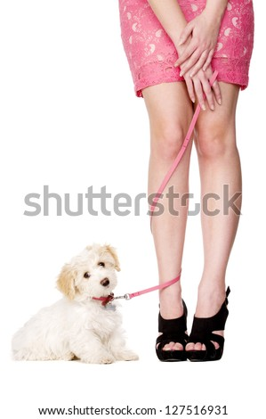 Small white puppy sat with her pink lead tangled around a woman's legs isolated on a white background