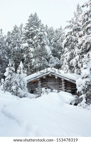 Small wooden blockhouse in winter in the white snow in the snowy forest of pine trees, winter landscape - stock photo