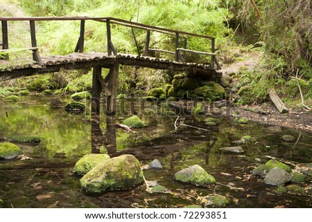 Small wooden bridge over a stream in a forest - stock photo