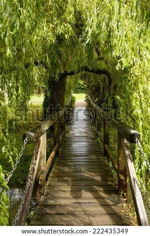 small wooden bridge under willow tree at  Bishop Palace,Wells view of small pedestrian wooden bridge under a willow tree in garden of the ancient palace  - stock photo