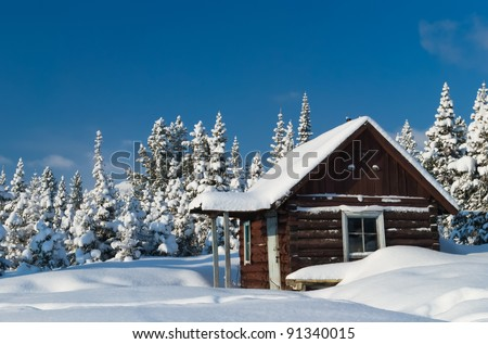 Small wooden house covered by snow
