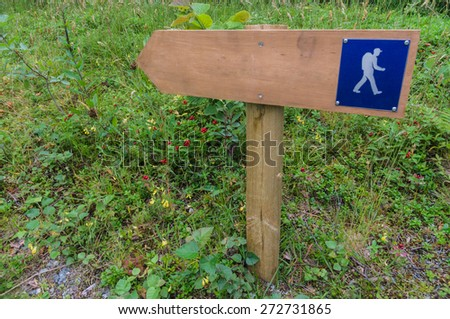 Small wooden trail sign in a forest area for hiking and walking - stock photo