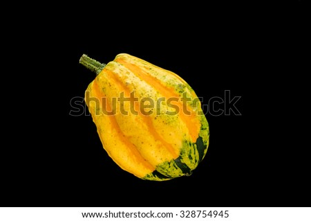 Small, yellow - green pumpkin on black background