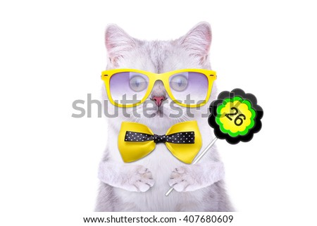 Smart beautiful british cat with a sign. Days of the month. Funny animals. Trendy cat dressed in beautiful clothes - stock photo