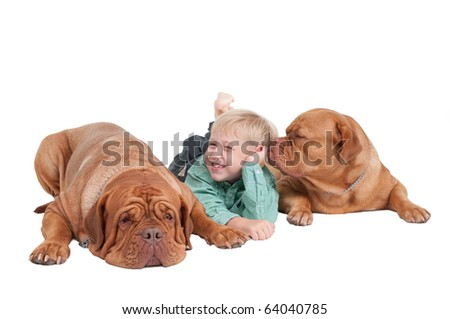 Smiling boy and two big dogs playing on the floor - stock photo