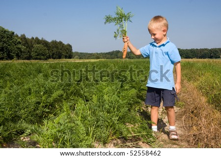 Smiling boy having fun while harvesting carrots on field - stock photo