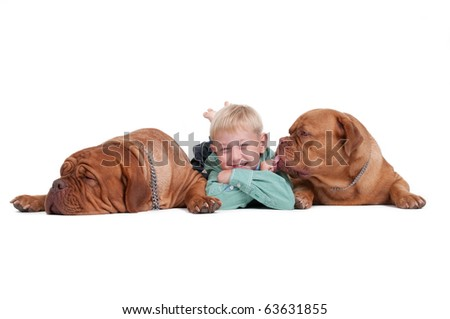 Smiling boy lying on th efloor among two big dogs