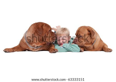Smiling boy lying on the floor playing with two big dogs