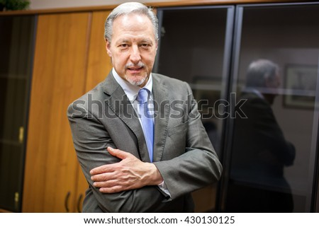 Smiling businessman in his office - stock photo