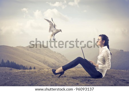Smiling businesswoman sitting on a hill and using a laptop with seagull flying beside her - stock photo