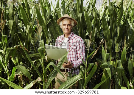 Smiling farmer using a laptop in the fields, corn plants on background, technology and agriculture concept - stock photo