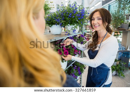 Smiling florist showing fresh flower plant to female customer in shop - stock photo