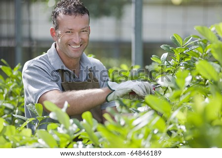 Smiling gardener in a greenhouse