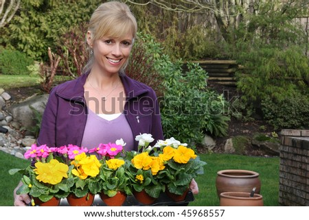 Smiling gardener with a tray of primulas ready to be planted. Also available in vertical. - stock photo