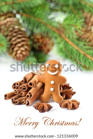 smiling gingerbread man with christmas spices. selective focus. merry christmas. card concept - stock photo