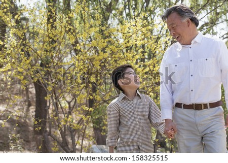 Smiling grandfather and grandson holding hands and walking - stock photo
