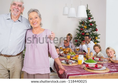 Smiling grandparents standing by the dinner table at christmas time - stock photo