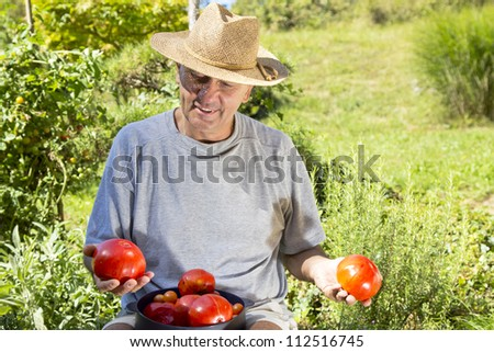 Smiling happy man showing organic tomatoes, on sunny summer afternoon